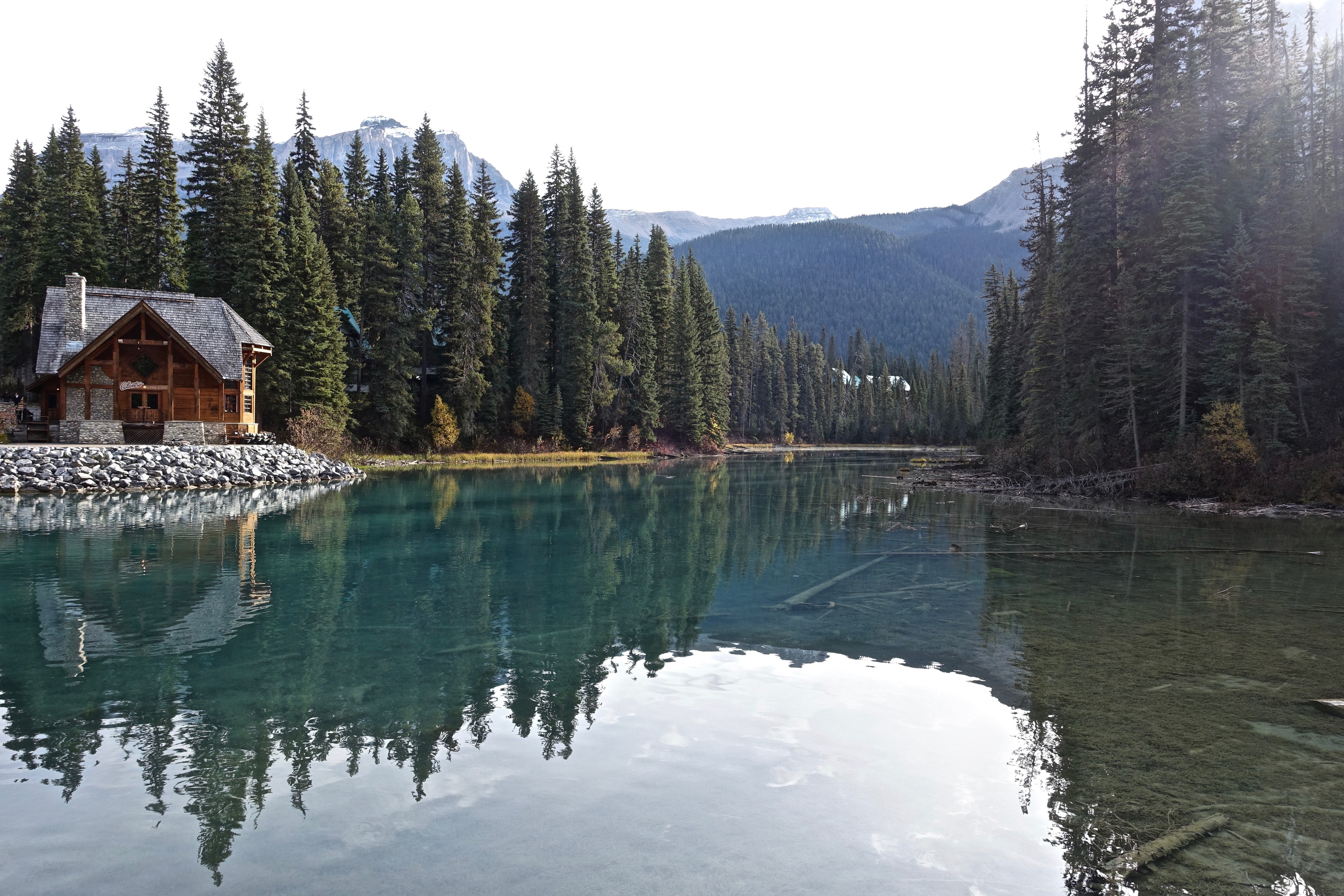 building-calm-waters-conifers-325947